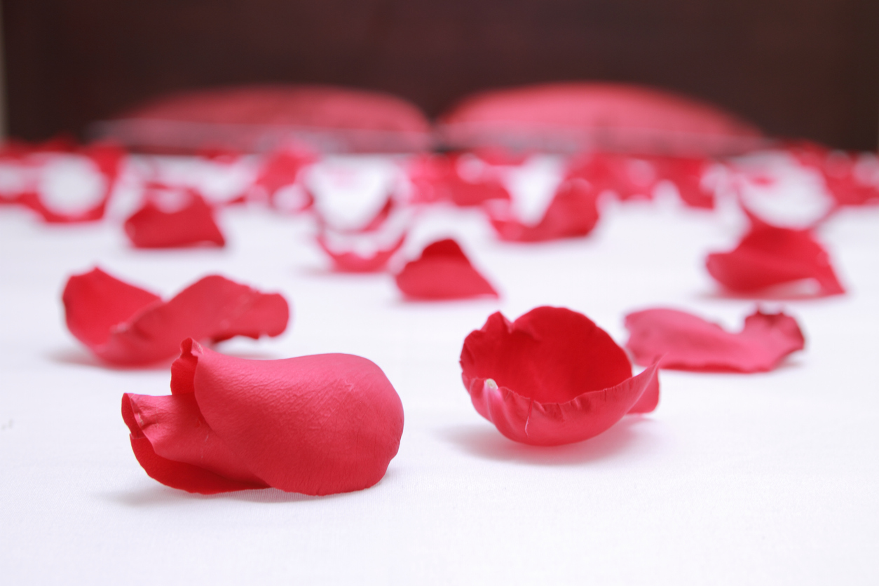 red rose petals on a white hotel bed